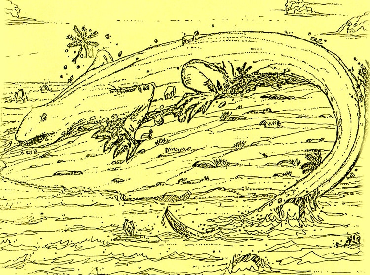 Lézard géant du motu Mokoki à Hao