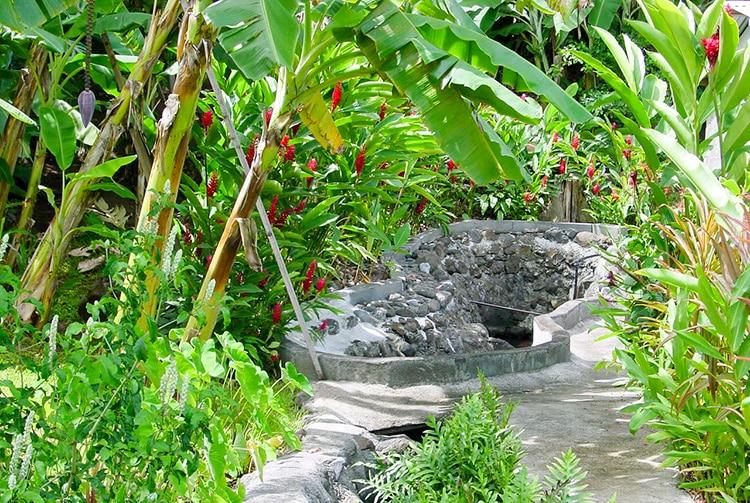 Source Vaitipiha de vahine Tetea - Mahina © Tahiti Heritage