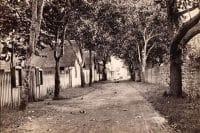 Rue Paul Gauguin, anciennement de la Petite Pologne, Papeete d'antan