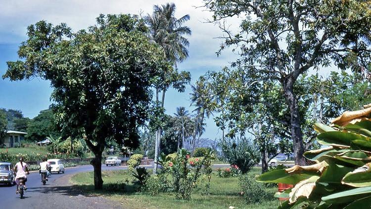Le carrefour de l'aéroport de Faa'a. 1966. Photo Treboz
